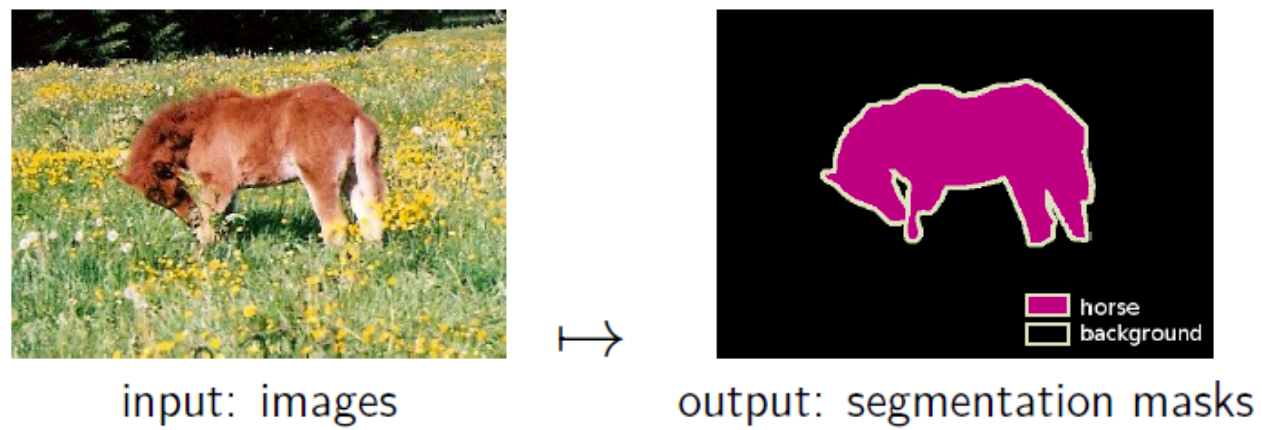 An illustration of the image segmentation problem.